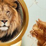Vaincre sa timidité : comment avoir confiance en soi par hypnose